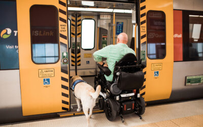 What is the difference between an Assistance Dog and an Emotional Support Dog?